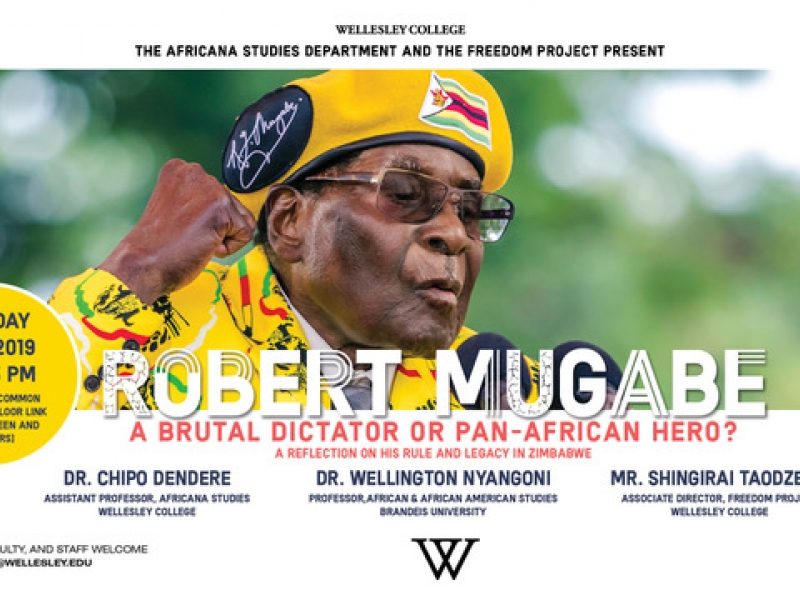 Robert Mugabe: Brutal Dictator or Pan African Hero